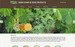 Amba Gums & Feeds Products